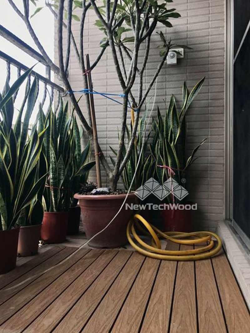 喜歡植栽的客戶分享-虎尾蘭