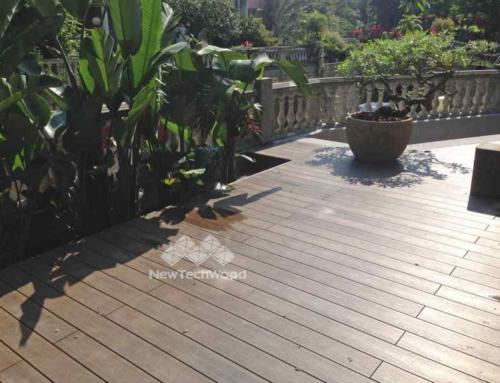 充滿綠意的庭園-胡桃木地板與綠意的天堂鳥