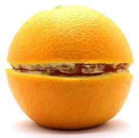 割開的殼層的塑木類似柳橙從中劃開間